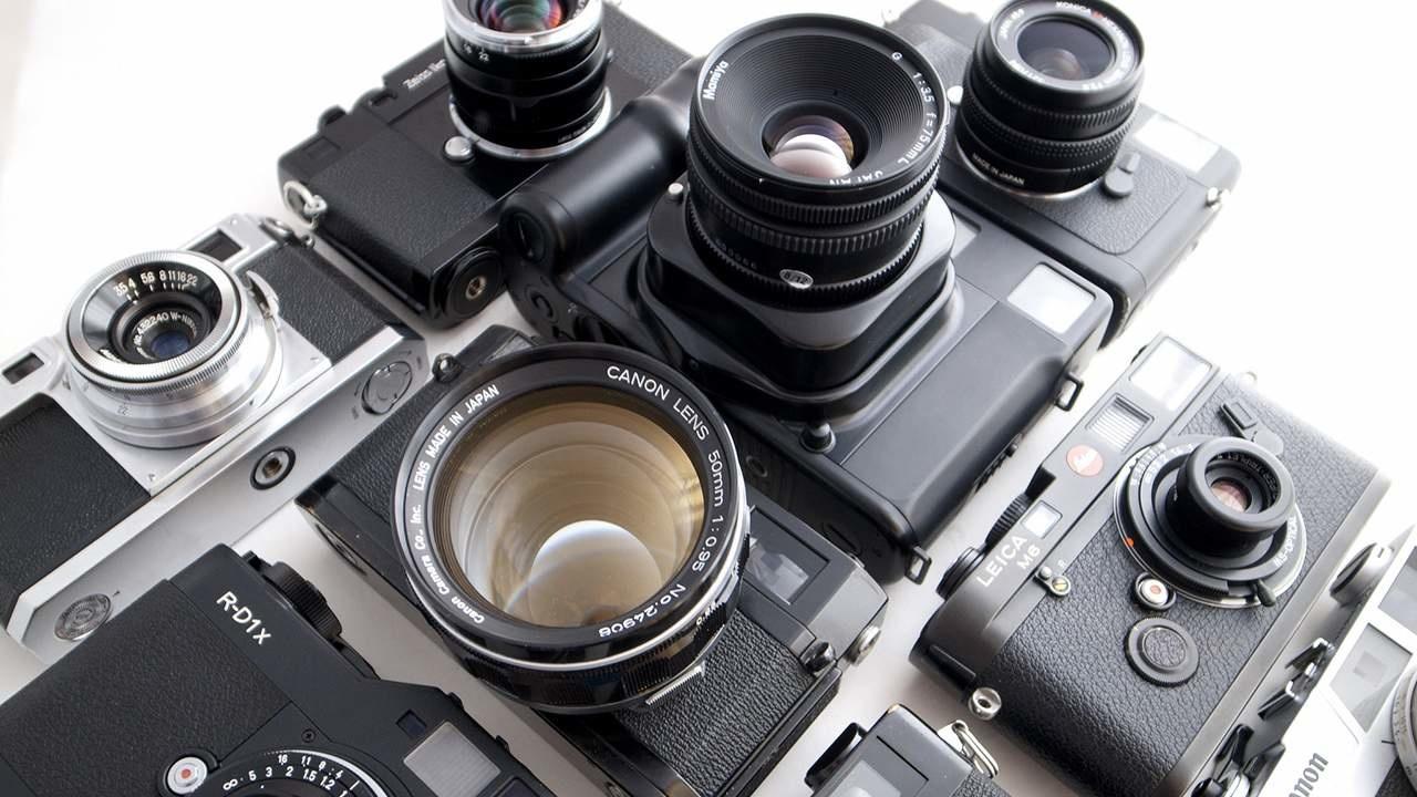 прыткая ящерица все о фотоаппаратах для начинающих наш